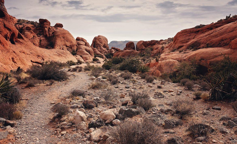 Karheaa kivistä kauneutta Yhdysvalloissa