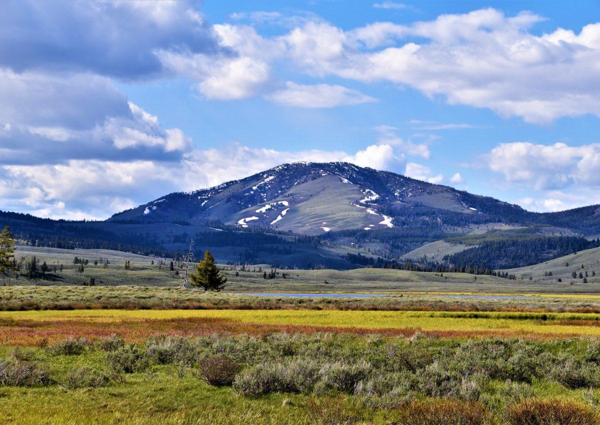 Kansallispuistossa on komeat vuorinäkymät